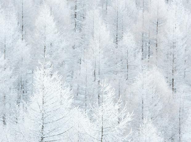 Фото №18 - Let it snow: самые снежные страны
