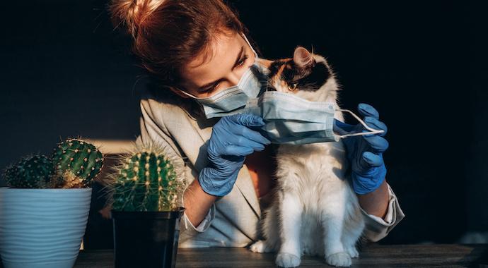 «Коронавирусный синдром»: чем нам еще грозит пандемия?