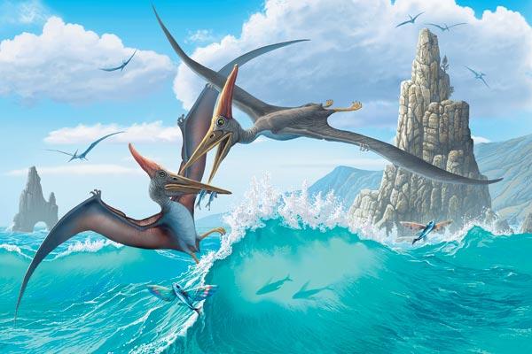 Фото №2 - Небесные драконы
