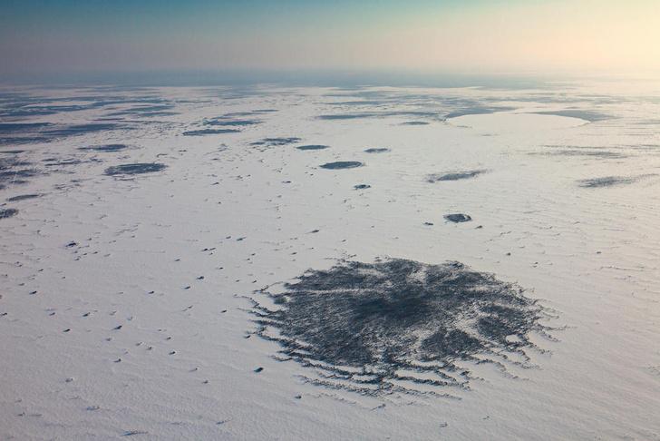 Фото №11 - Притягательная трясина: 12 самых живописных болот мира
