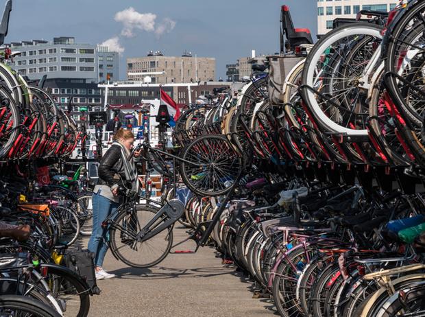 Фото №5 - 5 лучших городов мира для велопрогулок (и квартир для остановки там)