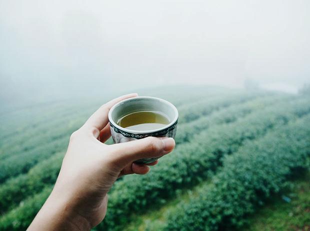 Фото №4 - Как правильно заваривать чай: 5 самых распространенных ошибок