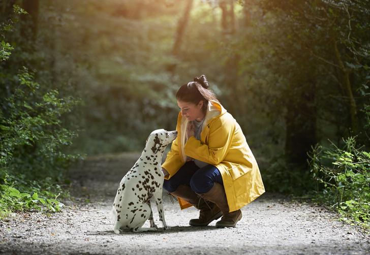 Фото №2 - 30 фактов о собаках, которые вы могли не знать