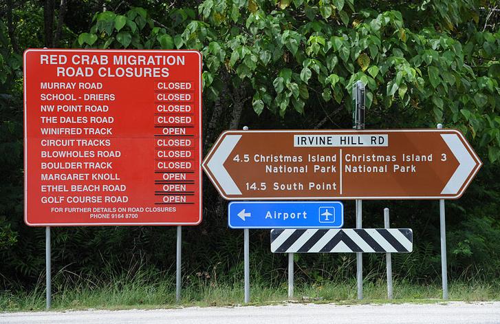 Красный указатель слева перечисляет дороги, перекрытые в связи с миграцией крабов