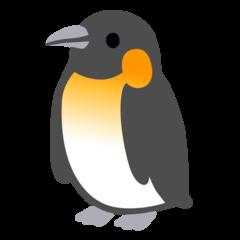 Фото №1 - Гадаем на пингвинах: чем порадует середина недели? 👀