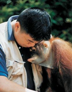 Фото №2 - В семье не без примата