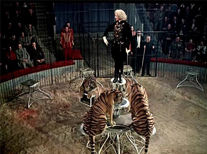 Фото №4 - Маргарита Назарова: звездный час, «итальянский» брак и одинокая смерть королевы тигров