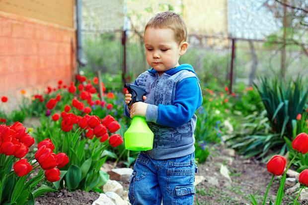 Фото №3 - Играем в садовников: практическая ботаника для детей