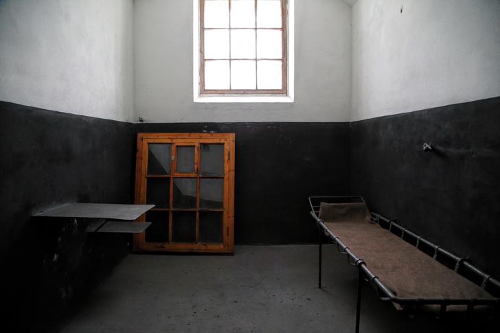 Фото №1 - Статистика: какие книги чаще всего читают заключенные в России