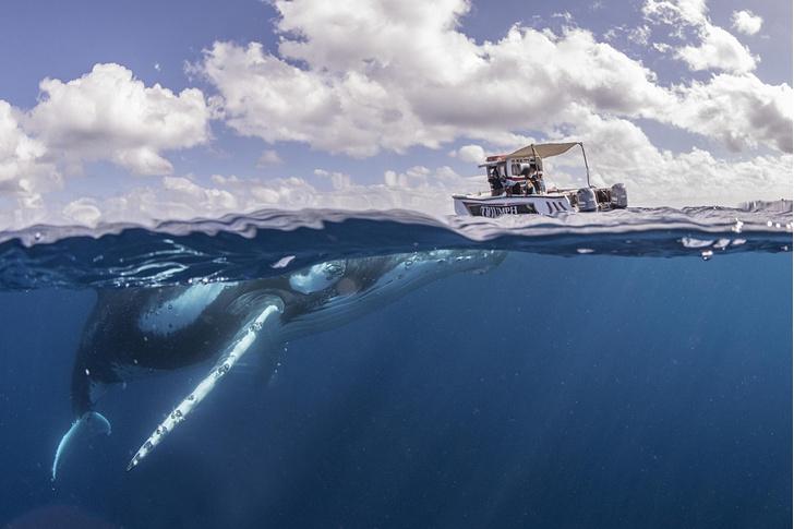 Фото №1 - 30 тонн под водой