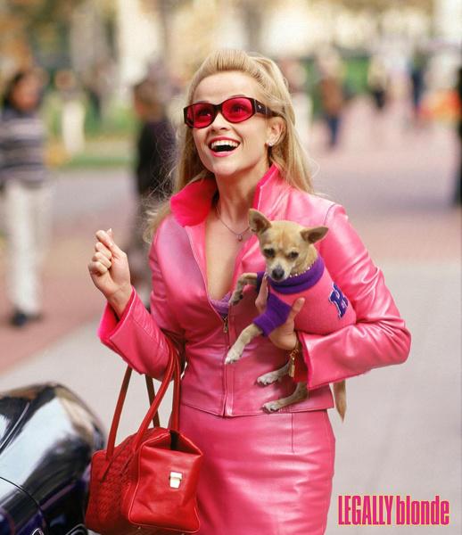 Фото №2 - Все, что мы знаем о «Блондинке в законе 3»