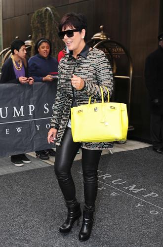 Фото №17 - Клуб по интересам: знаменитые поклонницы сумок Birkin