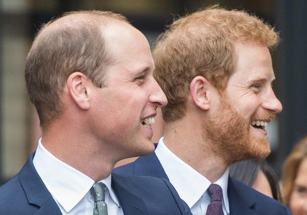 Фото №11 - Братская война: что на самом деле происходит в отношениях между принцами Гарри и Уильямом, комментируют эксперты