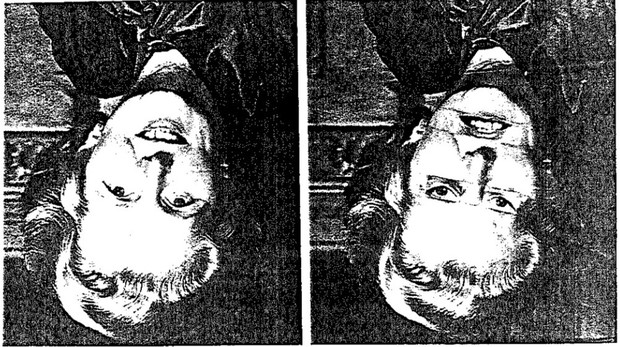Фото №9 - Как работает классическая оптическая иллюзия, получившая название «Эффект Тэтчер»