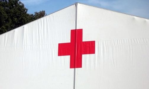 Фото №1 - Петербургские врачи несут вахту в лагерях для беженцев из Украины