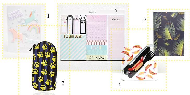 Фото №1 - 20 канцелярских товаров для школы