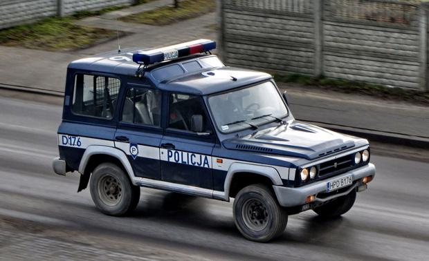 Фото №10 - Приятная неожиданность: 9 крутых автомобилей из неавтомобильных стран