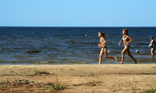 Фото №1 - В Ленобласти можно купаться только на 16 безопасных пляжах