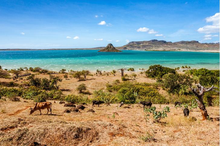 Фото №1 - Крупнейший остров-государство: путешествие на Мадагаскар