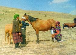 Фото №3 - Памирский марш