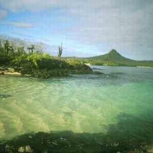 Фото №1 - Экологическое бедствие Галапагоса