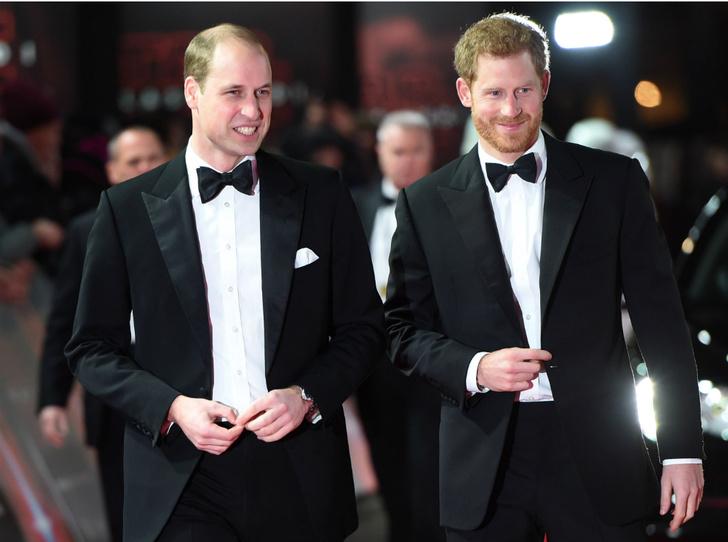 Фото №1 - Такие разные принцы: были ли Уильям и Гарри близкими людьми на самом деле