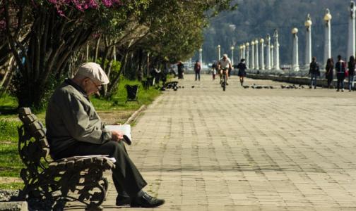 Фото №1 - Где и как пожилые петербуржцы смогут получить помощь