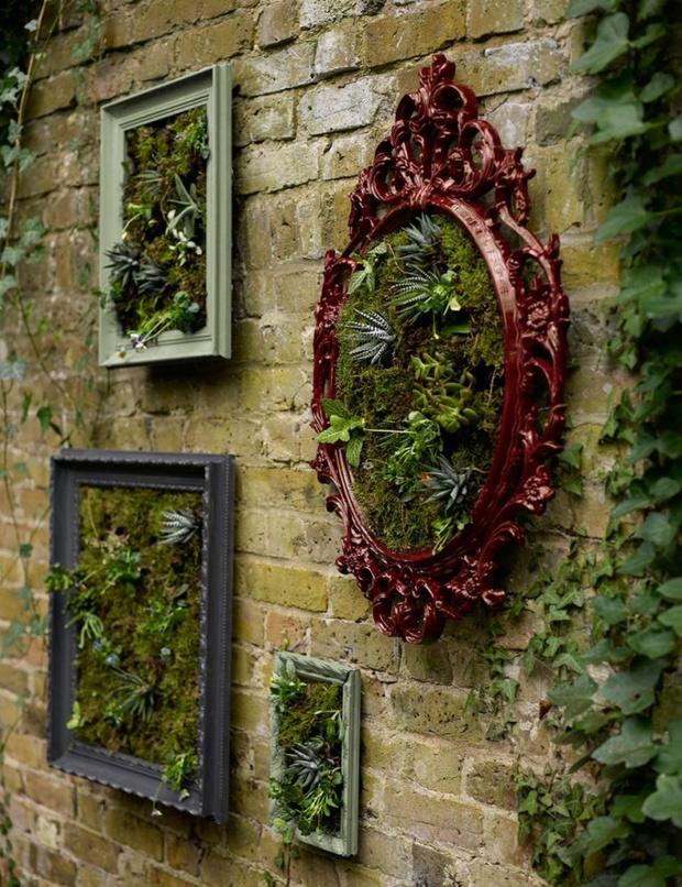 Фото №1 - Вертикальный сад: 7 оригинальных идей