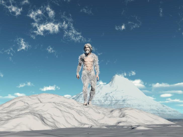 Фото №4 - От Несси до снежного человека: 4 самых загадочных существа в истории