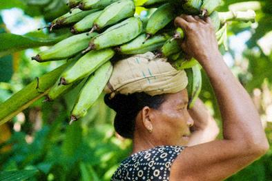 Фото №10 - Рабочий момент: банановый рай
