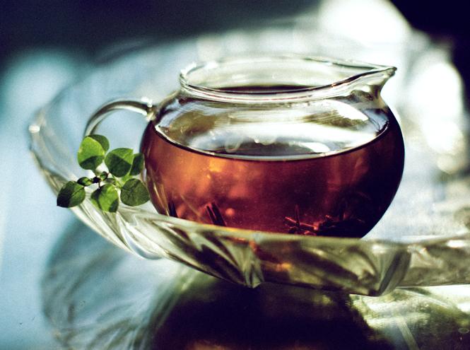 Фото №7 - Все, что вы должны знать о чае