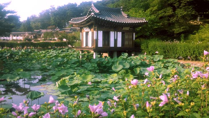 Фото №4 - Интересный корейский: вступительный урок— сказание о корейском алфавите