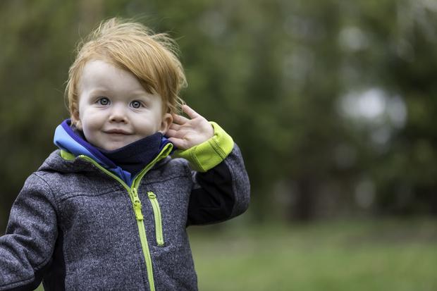 Фото №1 - Развитие слуха у ребенка от рождения до года