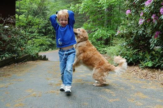 Фото №1 - Исследование: собака в доме положительно влияет на взросление ребёнка