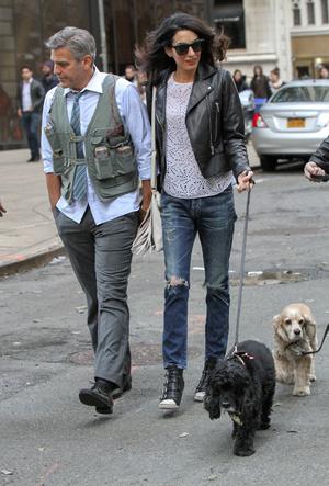 Фото №4 - Доброе сердце: Меган Маркл, Джордж Клуни и другие звезды, взявшие собаку из приюта