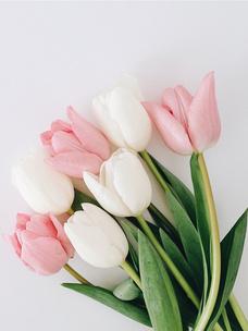 Фото №2 - Тест: Выбери цветок, и мы угадаем, какого цвета у тебя глаза