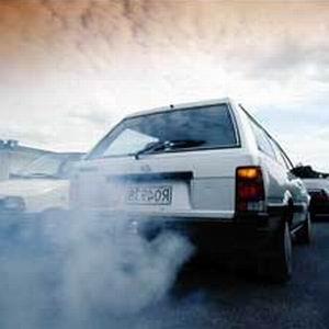 Фото №1 - Биотопливо вреднее бензина