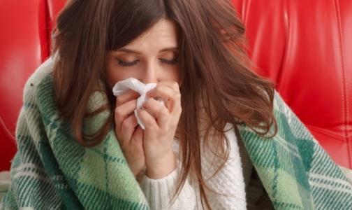 Фото №1 - Эксперты прогнозируют высокую смертность от гриппа в этом сезоне