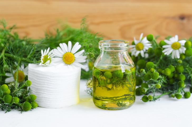 Фото №1 - Лечебные травы: как правильно собирать и применять