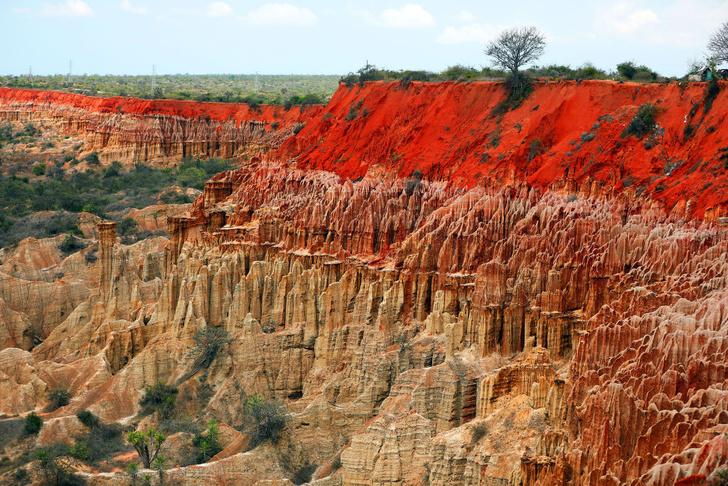 Фото №1 - Один кадр: Ангола
