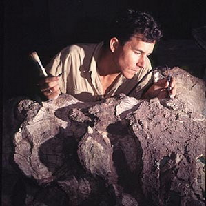 Фото №1 - Хищники из древней Сахары