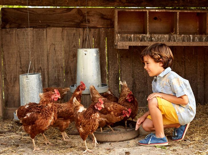 Фото №4 - Почему вашему ребёнку необходим питомец