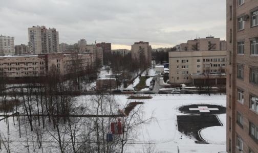 Фото №1 - Росздравнадзор проверит Елизаветинскую больницу после смерти пациентки