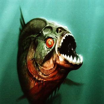 Строение челюстей и острых как бритва зубов пираньи позволяет ей вырывать из добычи крупные куски мяса.