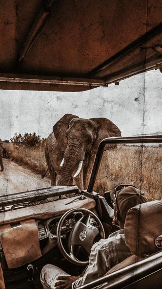 Фото №3 - Аромат дня: Reflet sur L'Okavango от Ella K