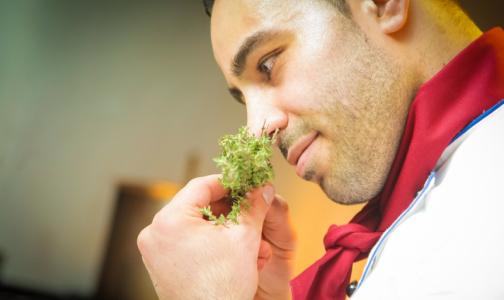 Фото №1 - Эксперты назвали продукты из-за которых тело может неприятно пахнуть