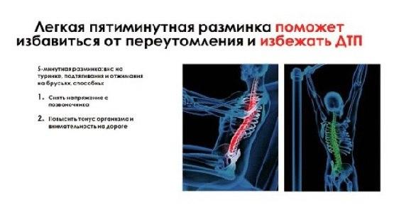 Фото №2 - На платной трассе Москва – Петербург появятся «станции здоровья»