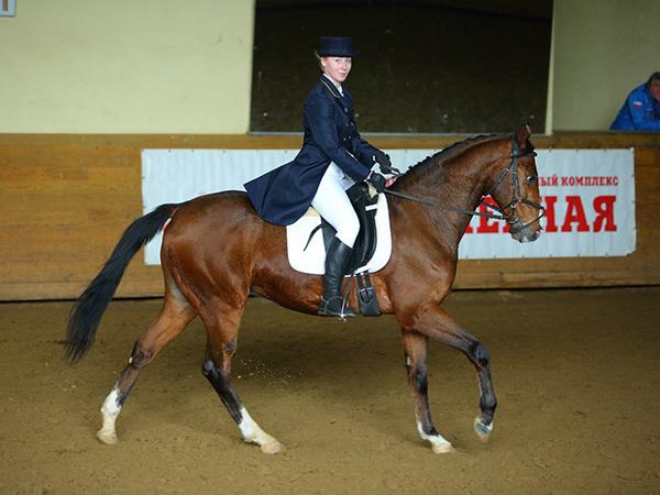 Фото №27 - Девушки на коне: самые романтичные наездницы Ульяновска