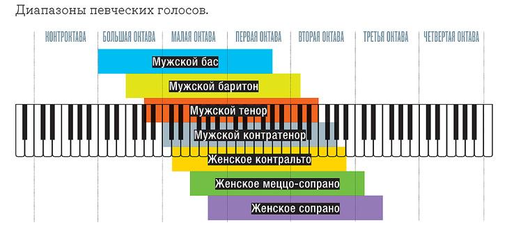 Фото №4 - Сверхчеловек: вибрации высокой частоты