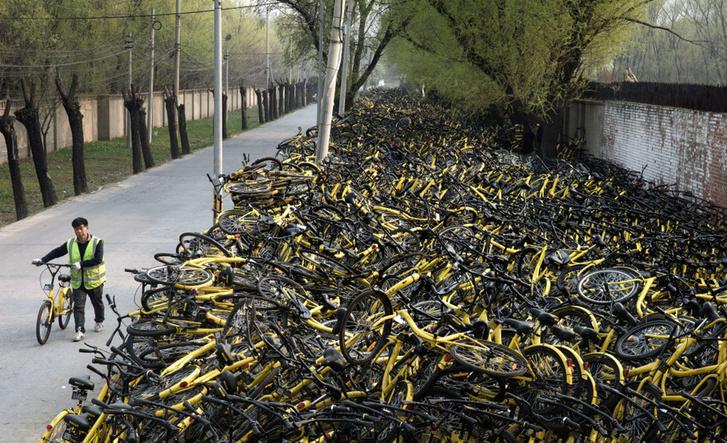 Фото №1 - Сезон велопроката открыт